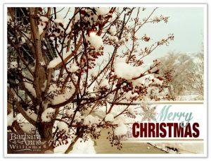 Merry Christmas   BarbaraAnneWilliams www.bitsofivory.com